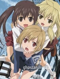 Сёстры Минами [ТВ-2] / Minami-ke Okawari