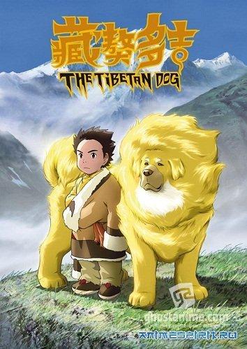 Смотреть аниме Tibet Inu Monogatari: Kin'iro no Dao Jie / Tibetan Dog онлайн бесплатно