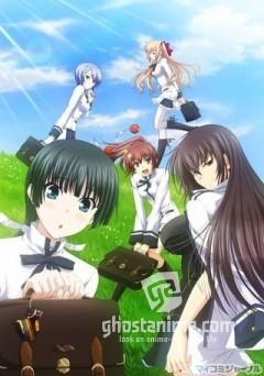 Смотреть аниме Прошу, люби меня всерьёз  / Maji de Watashi ni Koi Shinasai!! онлайн бесплатно