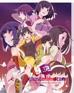 Смотреть аниме Истории подделок / Nisemonogatari онлайн бесплатно