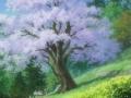Миёри и волшебный лес / Miyori's Forest