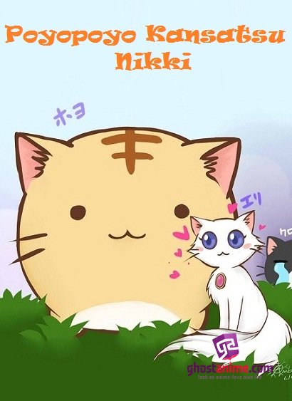 Кот по имени Пойо / Poyopoyo Kansatsu Nikki