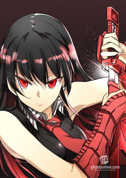 Смотреть аниме Убийца Акаме / Akame ga Kill онлайн бесплатно