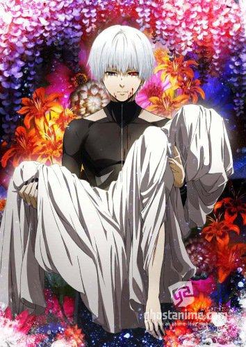 Смотреть аниме Токийский гуль ТВ-2 / Tokyo Ghoul TV-2 онлайн бесплатно
